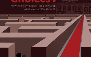 """Whose Bad Choices"" report cover"